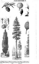 Стр. 48