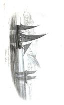 Стр. 137