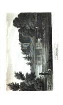 Стр. 249