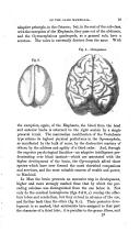 Стр. 19