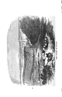 Стр. 82
