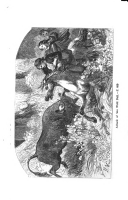 Стр. 411
