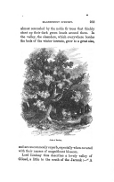 Стр. 233