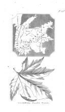 Стр. 126