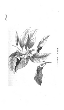 Стр. 142